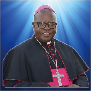 LENT CAMPAIGN 2014 Message from the Bishop Chairman – CJPC